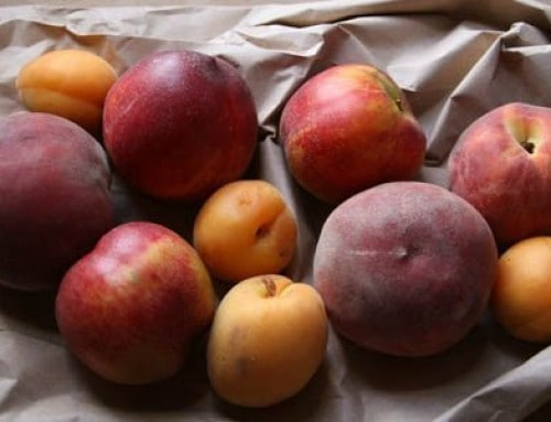 Recipe: Pesche al Vino | Peaches with Wine