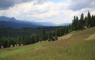 rural-poland